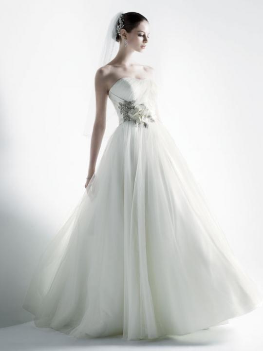 10 Trendiest Wedding Dresses at David\'s Bridal   Apple Brides